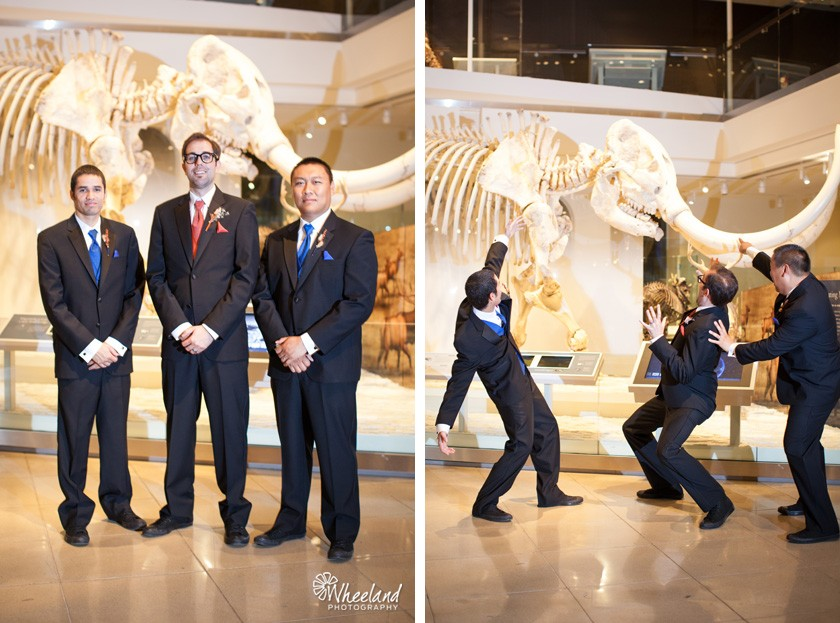 Los Angeles Natural History Museum Wedding