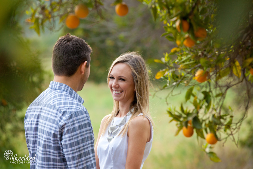 Creative Orange Grove Engagement