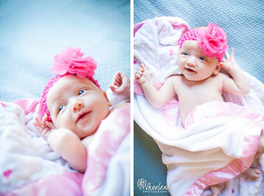 Wheeland Newborn Photography