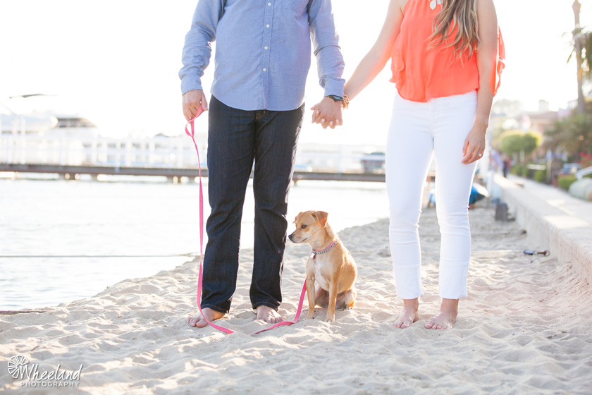 Engagement Photos with dog Newport Beach