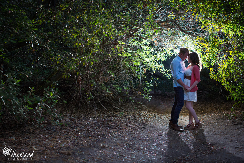 Engagement Photos Oak Canyon Nature Center Anaheim