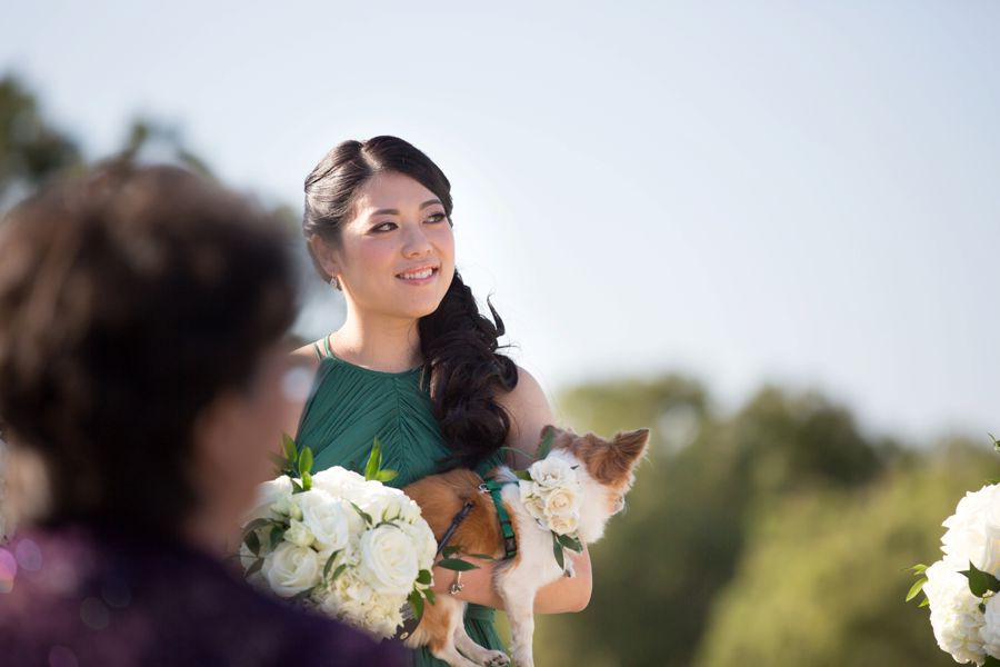 Orange County Wedding with dog