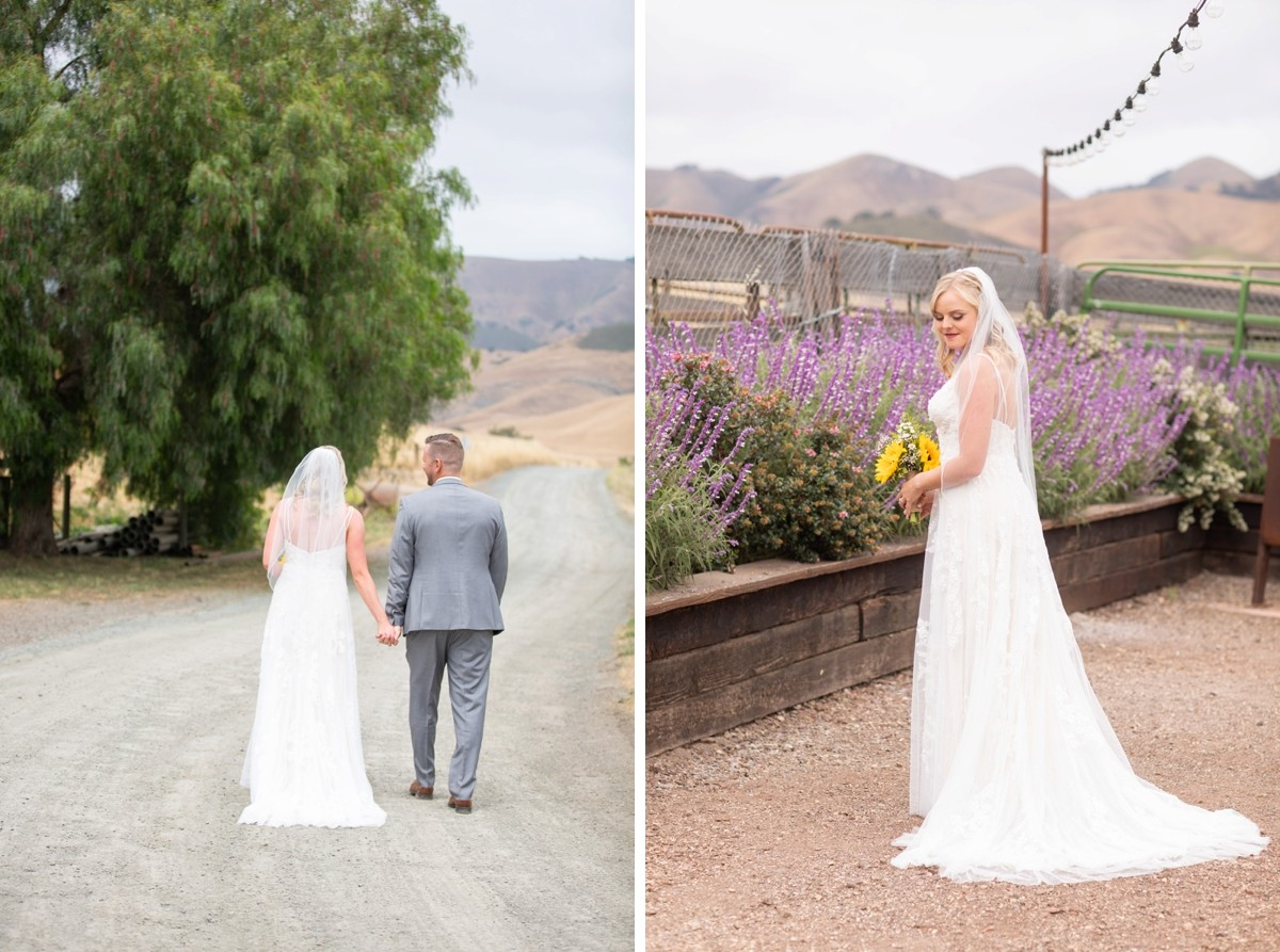 Spreafico Farms San Louis Obispo Wedding